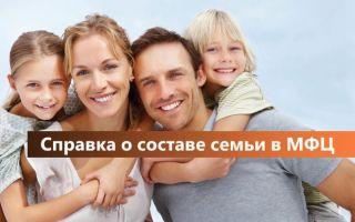 Справка о составе семьи в МФЦ