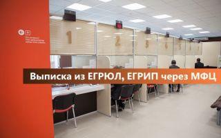Выписка из ЕГРЮЛ, ЕГРИП в МФЦ